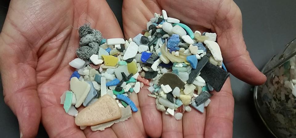 Muối Biển Đang Nhiễm Hạt Vi Nhựa Vô Cùng Độc Hại